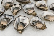 oysters-2220607_640.jpg